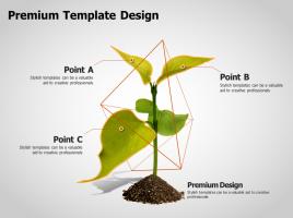 식물 성장 트리 다이어그램
