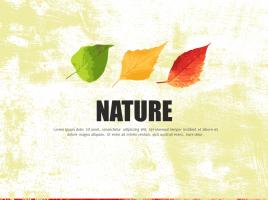 가을 잎사귀 피피티 템플릿