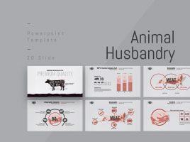 Animal Husbandry PPT Wide