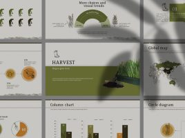 Agriculture PPT Wide