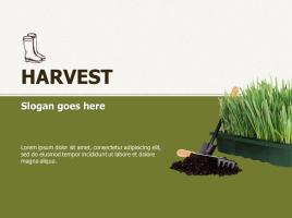 식물 재배 농업 파워포인트