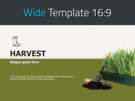 식물 재배 농업 와이드 파워포인트