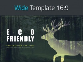 Eco-friendly PPT Wide