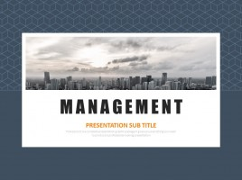 Management Animated PPT