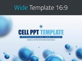 세포 피피티 와이드