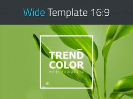 Trend Color PPT Template Wide