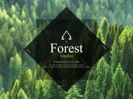 숲 템플릿