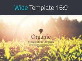 Organic Presentation Wide Template