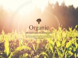 유기농 프레젠테이션 템플릿