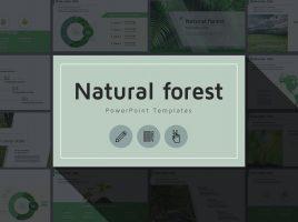 자연 숲 프레젠테이션 와이드 템플릿