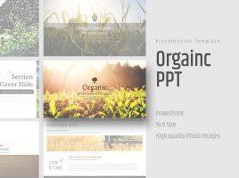 Organic Presentation Wide Template