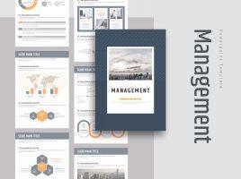 Management PPT Vertical