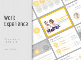 Work Experience Template PPT