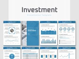 Investment Presentation Strategy Vertical